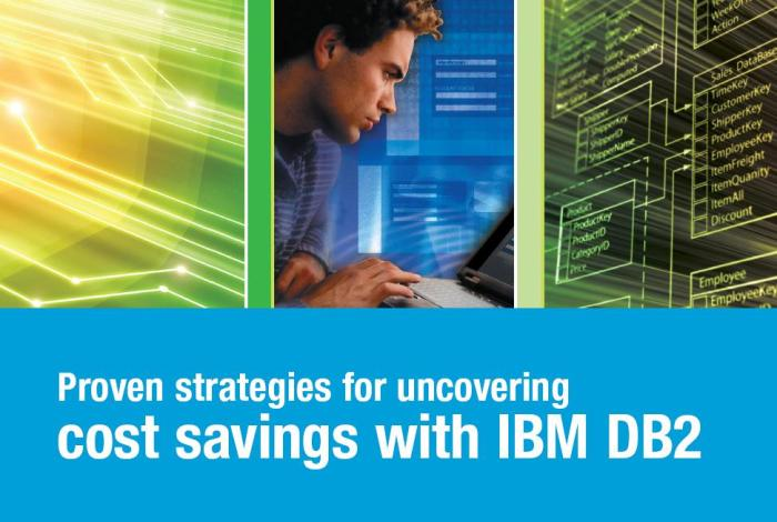 eBook: Proven Strategies for Uncovering Cost Savings with IBM DB2